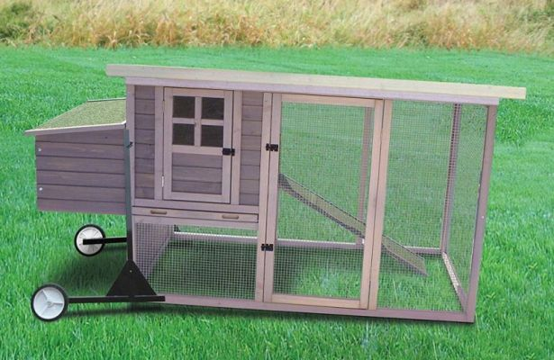 Swing Chicken Tractor Wheels : Best chicken tractors for sale better homes